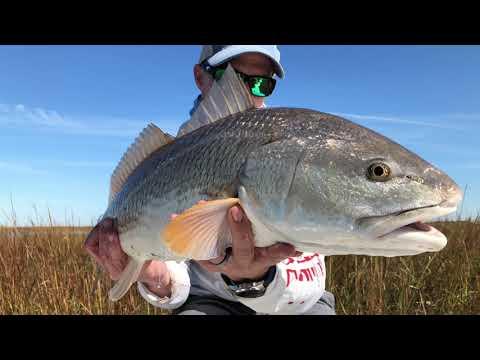 Fly Fishing For Texas REDFISH