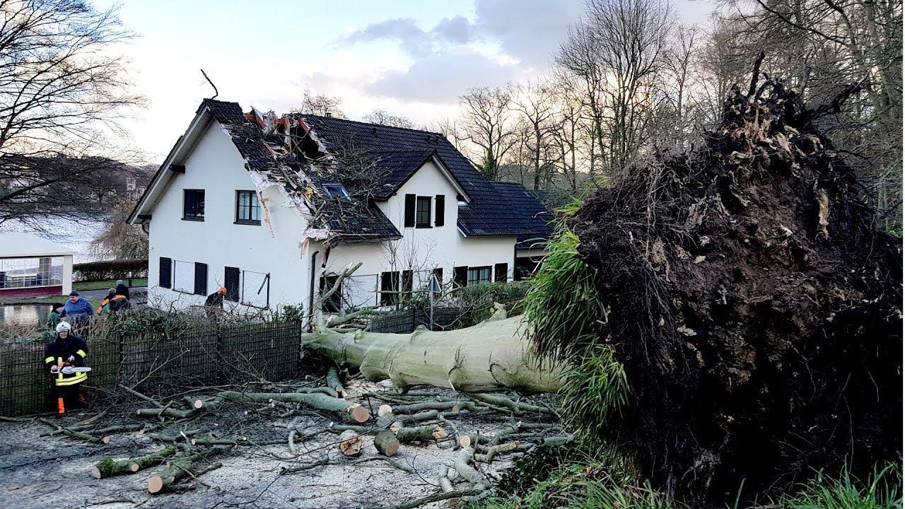 Baum stürzt auf Haus - Feuerwehr im Einsatz - Bad