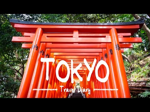 Travel Diary: Explore Crazy and Colorful TOKYO, JAPAN