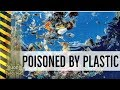 What are they doing to our food and water? Poisoned by Plastic in our food and water!