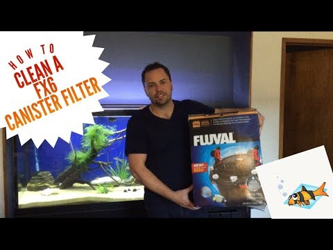 HOW TO CLEAN A FLUVAL FX6 CANISTER FILTER