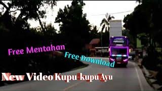 Kumpulan Video Bis Kupu-kupu Ayu Trans||Free Download+Free mentahan
