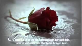 Hamada Helal-  Kol Ma Fakar Feek GERMAN SUBTITLE 2017 Video