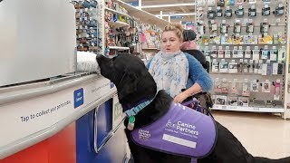 Assistance Dog Transforms Disabled Owner's Life