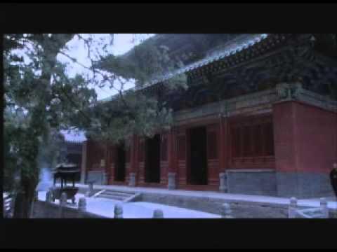 Shaolin Chan Martial Art Medicine
