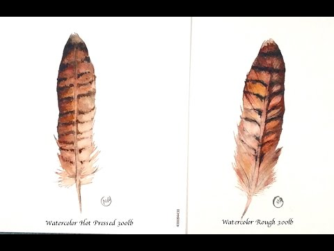 Watercolor Feathers Hot Pressed and Rough Watercolor Paper Painting Demonstration