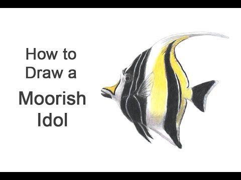 How To Draw A Fish (Moorish Idol)
