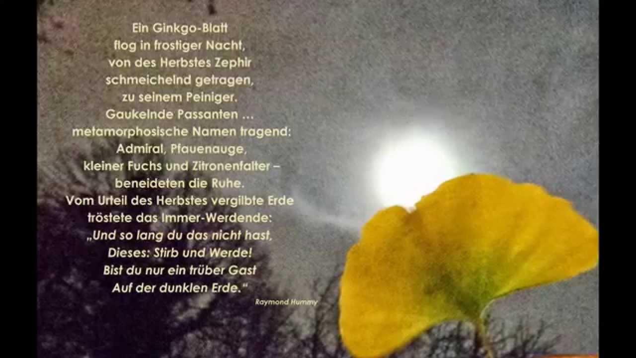 Ginkgo Lyrik Raymond Hummy Art Hommage à J W Von Goethe