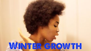 WINTER GROWTH ft RED by Kiss Detangler BLOW DRYER Thumbnail