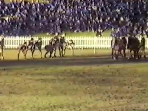 Kings vs Joeys, June 22nd 1985