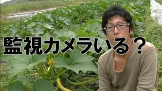 無農薬であることは安心・安全とイコールじゃない thumbnail