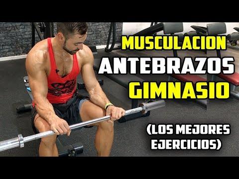 ejercicios para antebrazo en el gym