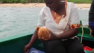 Fresh Coconut Anyone?