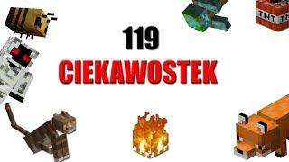 119 CIEKAWOSTEK O MINECRAFT!