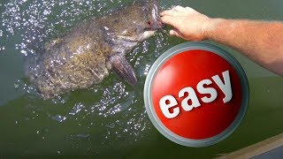 Catfishing: Use What is Easy!