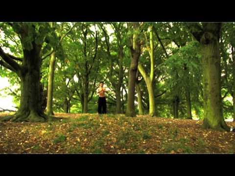 Shaolin Temple UK - Wang Zheng Ke