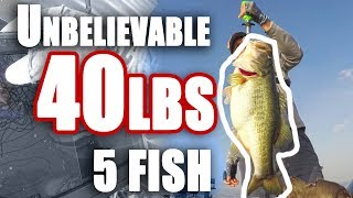 SOLO 40lbs Bags Fishing BASS~ INSANE ~Unbelievable DAY