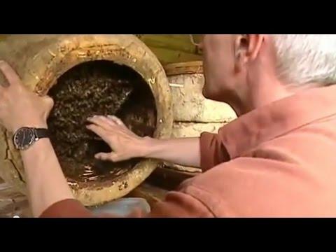 Der Bienenflüsterer