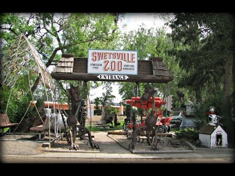 Swetsville zoo fort collins colorado flooded youtube - Olive garden fort collins colorado ...