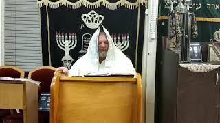🎥הרב אופיר שמיר שליט״א, ערב חודש סיון תפילת השל''ה הקדוש ❓