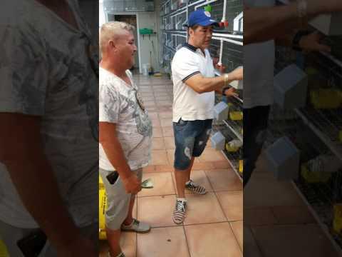 6781 W Flagler St Miami Miami On Time Pet Shop
