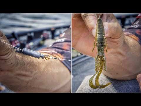 How To Rig And Fish The Carolina Rig