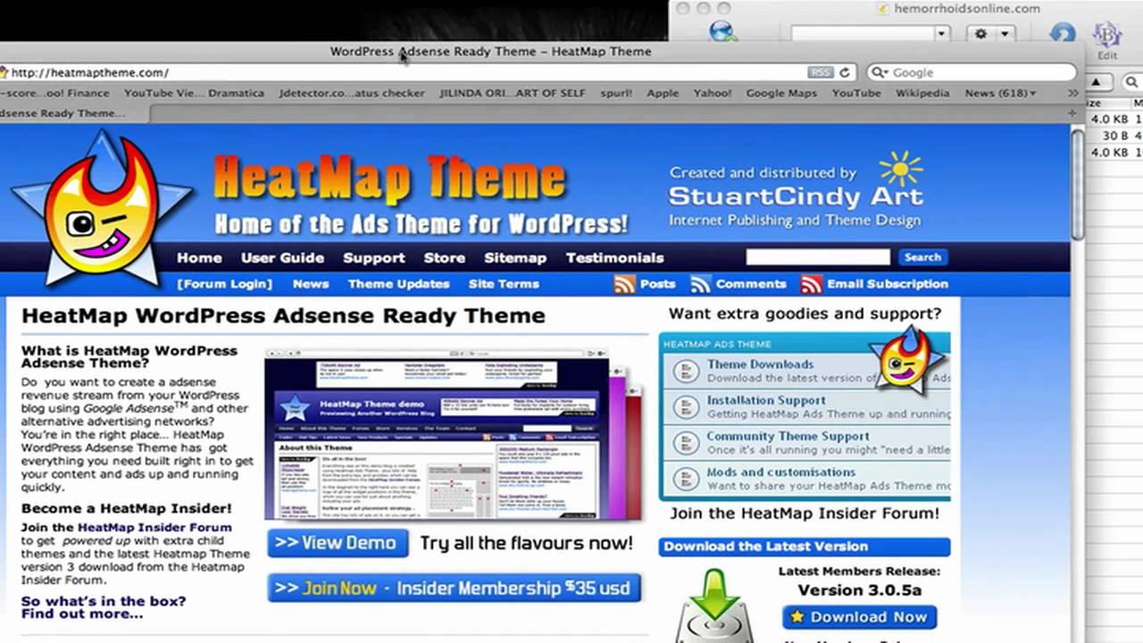 Installing Wordpress Adsense Theme - by Tim Beachum for Anatomy of ...