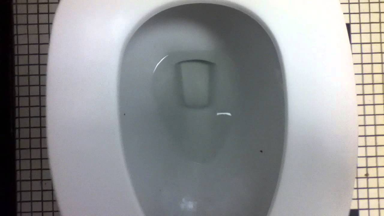 429] 2006 Toto Dalton Toilets (CST733) and AS Trimbrook Urinal - YouTube