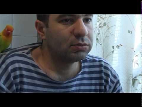 Армянский тамада 8 903 171 24 55