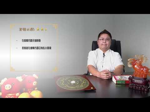 鼠2019运程 - 温勤毅师傅 (Master KYB) 分享