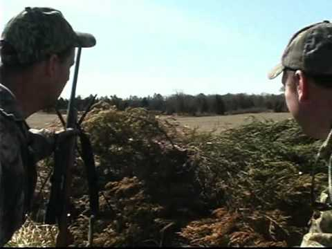 Carolina Outdoors - Coyote Hunting