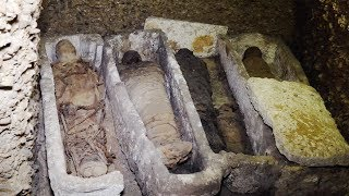 More than 40 ancient Greek mummies discovered in Egypt