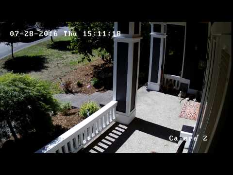 Man stole lawnmower (angle 2)