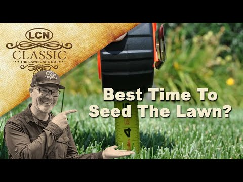 Best Time To Seed The Lawn? Planting Grass Seed - Timing