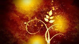 Урок_14_Adobe Photoshop CS5!!! Создание золотого магического цветка!!! Очень просто!!!