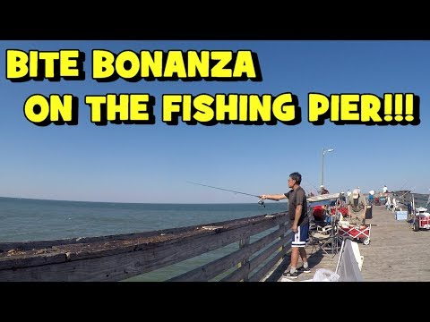 BITE BONANZA On The FISHING PIER! Filling Our Cooler RESPONSIBLY! (2019 VA Family Trip -- PART 3/4)