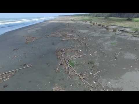 曾文溪出海口南岸青草崙沙灘海洋廢棄物現況 20160715