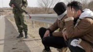 Greek police detain migrants arriving from Turkey