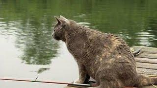 Рыбалка с Нормундом Грабовскисом