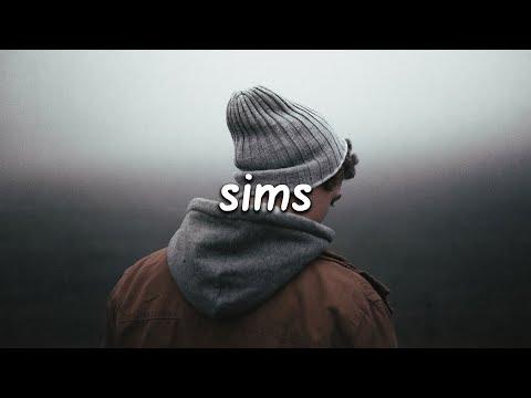Lauv - Sims (Lyrics)