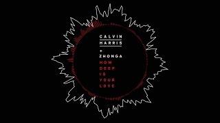 Calvin Harris - How Deep Is Your Love (Michael Zhonga Cover)