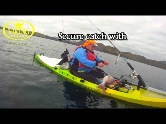 Kayak Fishing Northland NZ, Viking Kayaks Profish 440 snapper session
