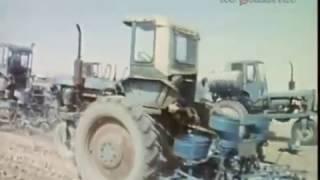 1988 год. В Узбекистане начался сев хлопчатника.
