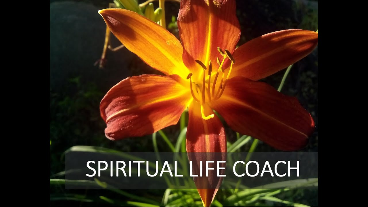 spiritual life review Life review questions: find a quiet time to reflect on these questions note what  emerges for you 1 what are your most pressing challenges or areas of.