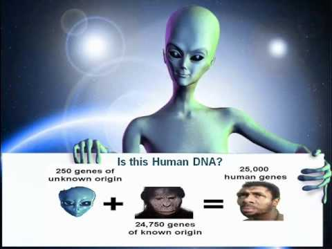 Part 1: Human DNA Mysteries - The Mechanics of Ascension