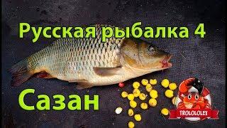 Русская рыбалка 4  Где ловить сазана  На что ловить сазана Russian fishing 4