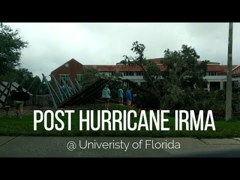 Post Hurricane Irma @ UF (Gainesville, FL)