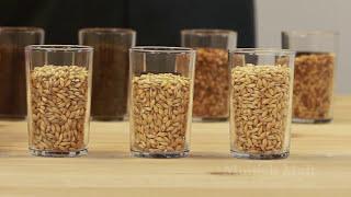 Tüm Tahıl Tarifi Tasarım Bira TV
