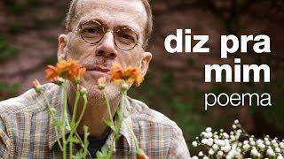 Baixar Nando Reis - Diz Pra Mim (poema)