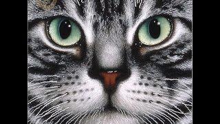 """СП"""" Мои любимые коты"""".2-отчёт.Вышивка бисером"""